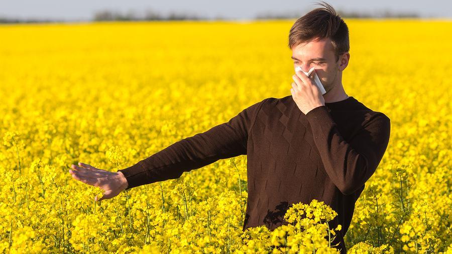 Alles über Pollenallergie - Wie kann man Beschwerden